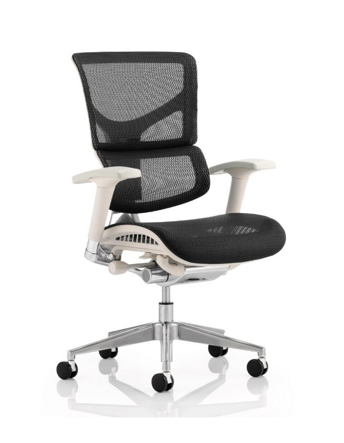 Ergo Dynamic Mesh Back Office Chair EO01GFBLKMESH 121 Office Furniture