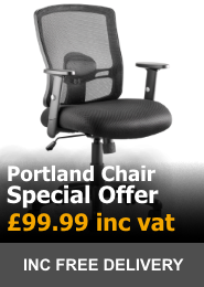 Dynamic Office Portland Mesh Office Chair