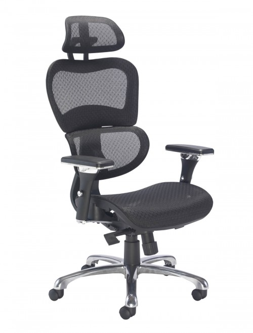 Office Chairs - Chachi Executive Mesh Office Chair CH1910