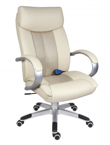 Shiatsu Massage Leather Chair