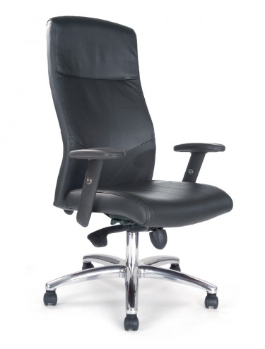 Jester Leather Faced High Back Executive Armchair PROF/LBK